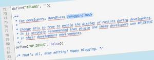 esempio del codice di debug